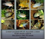 Contest fish pack 8 by AzurylipfesStock