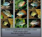 Contest fish pack 7 by AzurylipfesStock