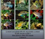 Contest fish pack 9 by AzurylipfesStock