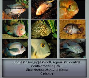 Contest Fish pack 11