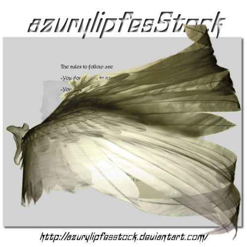 3D object - wings2 by AzurylipfesStock