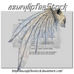 3D object - wings3