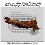 3D object - eagle1