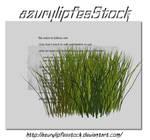3D object - grass2