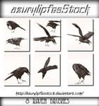 Ravenbrushes 3.0