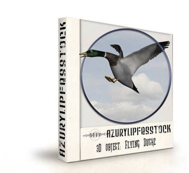 3Dobject-flying Duck2
