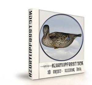 3D object-sleeping Duck