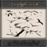 Bird brushes part 2