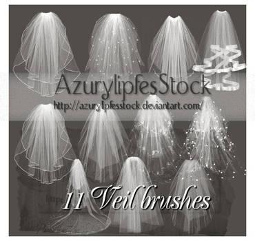 veil brushes psp 9 by AzurylipfesStock