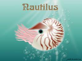 Nautilus by juhele