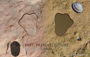 Linux: past, present, future by juhele