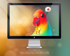Parrot Rapper By Phob and Macomix