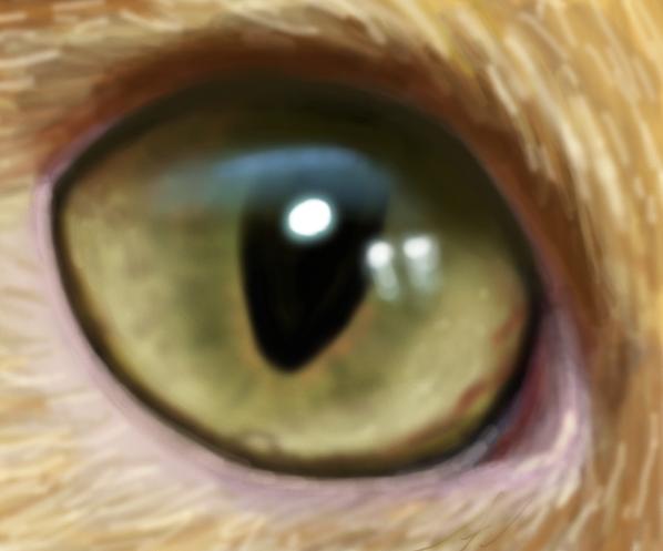 drawplz - an eye by Trutze
