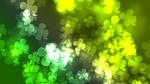 3 St. Patricks Day Shamrock Bokeh Wallpaper