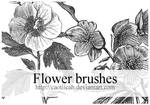 Flower brushes 03