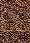 Leopard Print Vector 2
