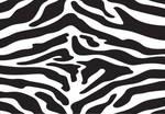 Zebra Print Vector 3