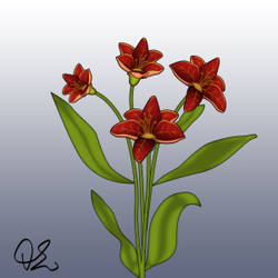Flower blooming animation - 2
