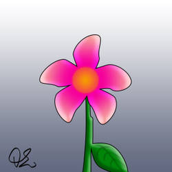 Flower blooming animation - 1