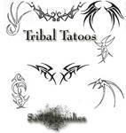 Tribal tatoo's