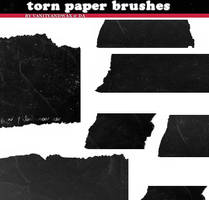 Brush Set: Torn Ancient Paper