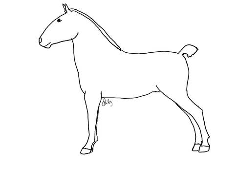 Horse Lineart 1