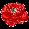 Flower 02 by hprune