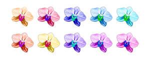 Flower pack 07