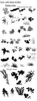 Leaves and grass brushes