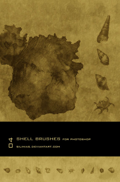 Shell Brushes PS  - 01
