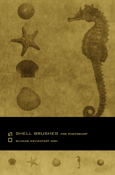 Shell Brushes PS - 02