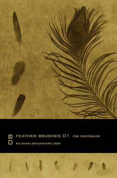 Feather Brushes PS - 01