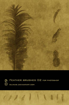 Feather Brushes 02 - PS