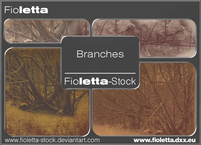 Branches Photoshop Brushes by fioletta-stock