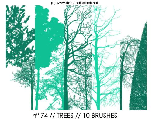 PHOTOSHOP BRUSHES : trees