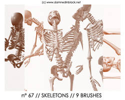 PHOTOSHOP BRUSHES : skeletons by darkmercy