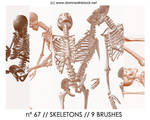 PHOTOSHOP BRUSHES : skeletons