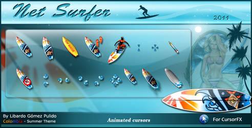 Net Surfer