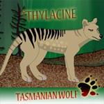 Tasmanian Wolf Maker