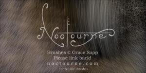 Noctourne's Fur Brushes by Aquae