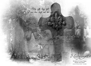 Noctourne's Angelic Brushes by Aquae