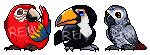 Bird pixel avatar Set 1 Unanimated by Renciel