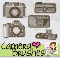 Camera Brushes by Payasiita