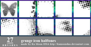 27 grunge icon halftones brushes