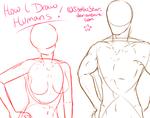 My Anatomy Process