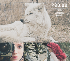 .PSD #02 by fatal-complexes