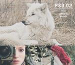 .PSD #02