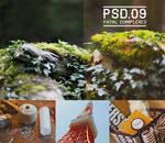 .PSD #09