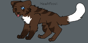 Hawkfrost by NeonCandyLights