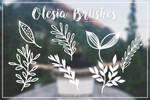 Olesia Brushes